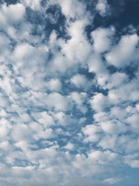 sky19