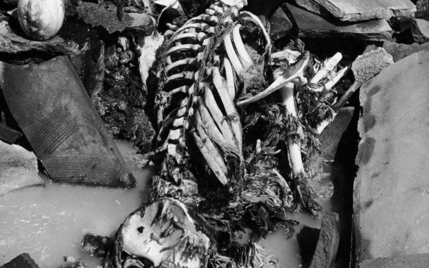 Atomic Bomb Radius >> Moral Rationalizing 69 Years Later: The Atomic Bombing of Nagasaki   Brett Milam